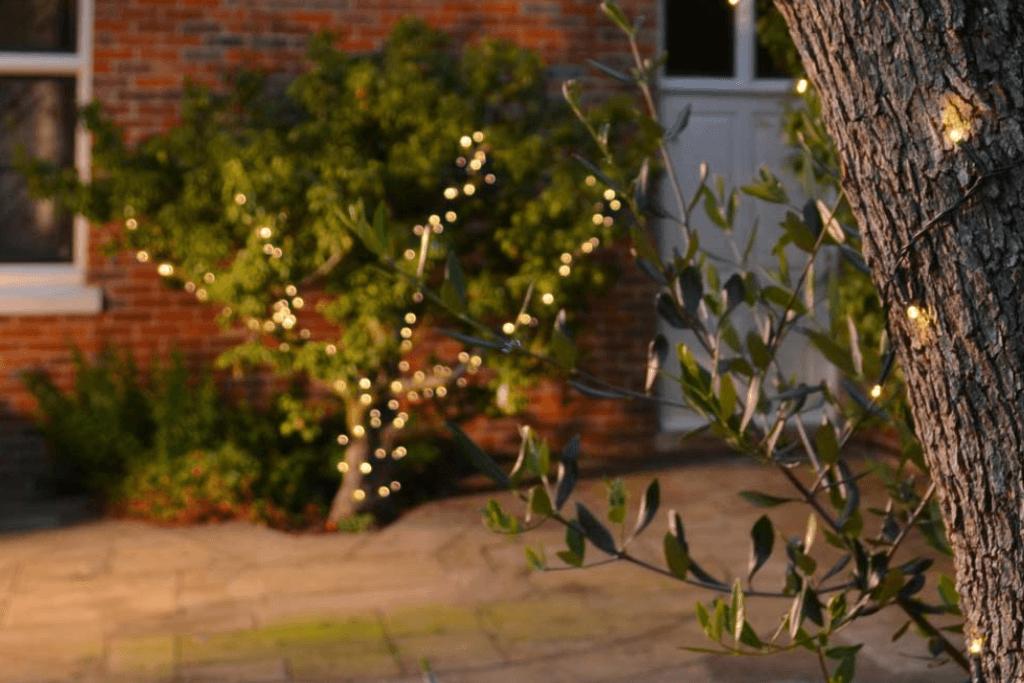 Solar kerstverlichting voor in je tuin